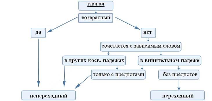 Что такое переходные и непереходные глаголы: как определить, примеры