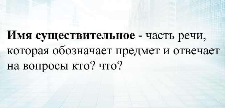 Имя существительное в русском языке